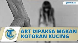 Kisah Pilu Seorang ART di Kota Surabaya, Disiksa Majikan hingga Dipaksa Makan Kotoran Kucing