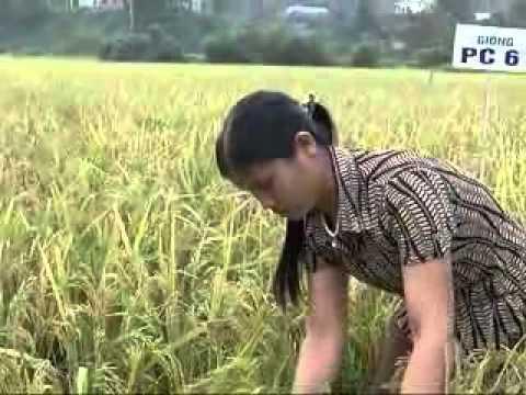 20 10 CM KHOA HOC VA CONG NGHE