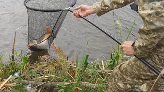 Рыбалка в сентябре на карпа