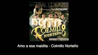 Amo a esta maldita (Audio) - Colmillo Norteño (Video)