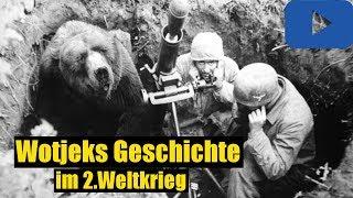 Die Herzzerreißende Geschichte von Wojtek, dem Soldatenbären -BrosTV