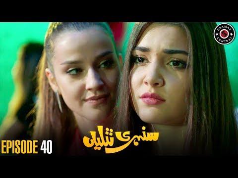 Sunehri Titliyan | Episode 40 | Turkish Drama | Hande Ercel | Dramas Central