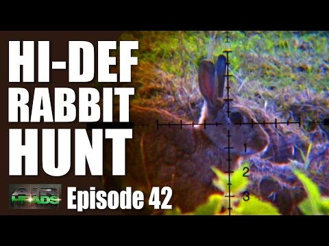 Hi-Def Rabbit Hunt  – AirHeads, episode 42