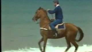 Caballo de Batalla - Juan Pardo (Video)