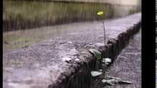 Hujan Turun - Sheila On 7