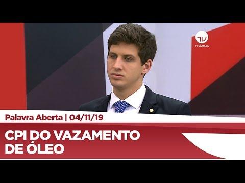 João Henrique Campos comenta criação de CPI para investigar óleo em praias do Nordeste