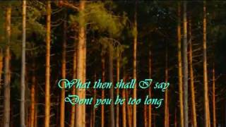 AIR SUPPLY - Chances (with lyrics)
