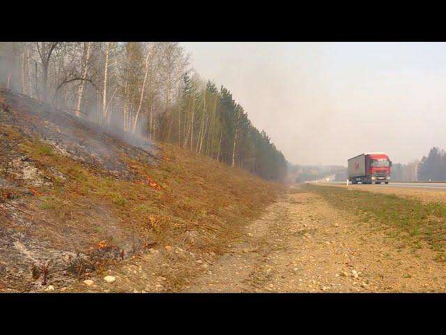 Лесные пожары в Ангарском округе