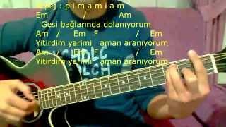 Gitar Dersi - Gesi Bağları