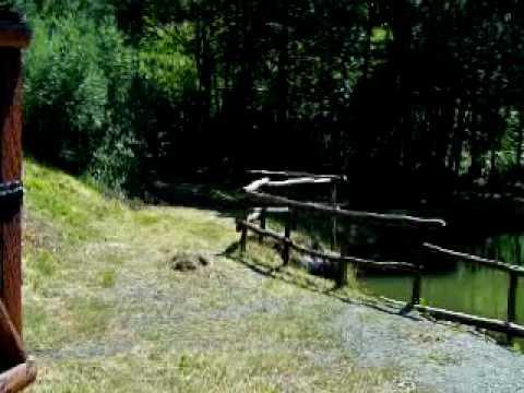 Gli jj collegano il pescatore 220 per pesca invernale