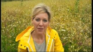 Summer wild flowers in concrete - BBC - 31st July 2016