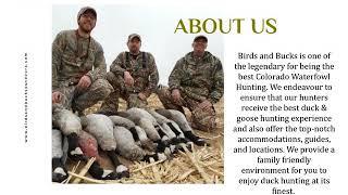 Colorado Duck Hunting