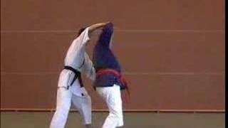 nihon taï jitsu - Atémi n° 8