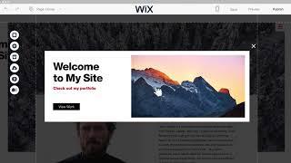 Vidéo de Wix