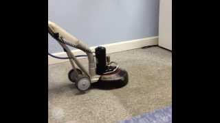 Carpet Cleaning in Raleigh – Durham NC by ProGreen Carpet