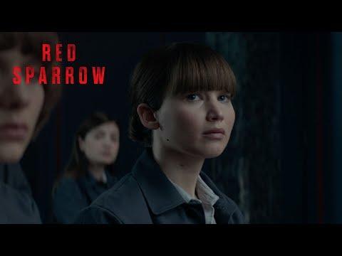 Bildergebnis für red sparrow