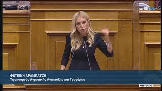 Ομιλία Φωτεινής Αραμπατζή επί του Προϋπολογισμού 2021 (14.12.2020)