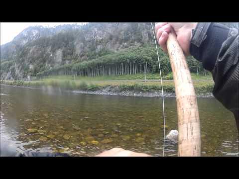 In totale per pescare in vermi in linea immagazzinano