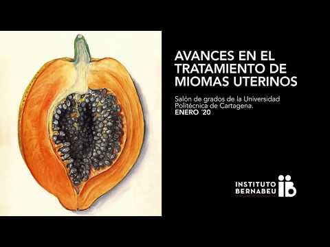 Avances en el tratamiento de miomas uterinos - Jornada Instituto Bernabeu Cartagena