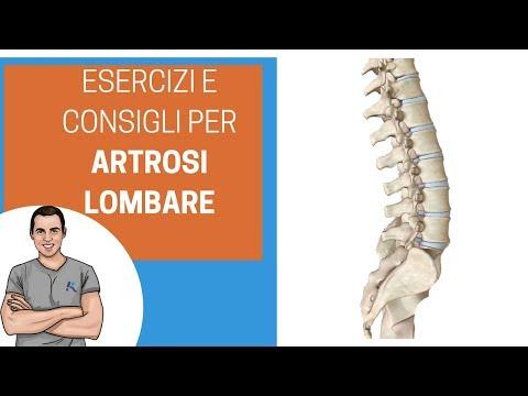 Foglio osteocondrosi rafano