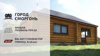 Отзыв о Скайпрофиль. Девятень Владимир