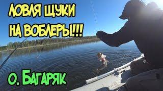 Озеро космаково рыбалка на что ловят щуку