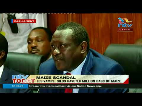 No money was lost in maize scandal, Agriculture PS says