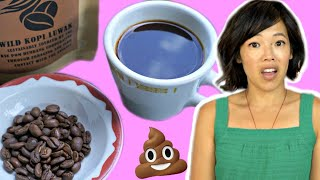 Civet POOP Coffee - Kopi Luwak | Is the most EXPENSIVE coffee up to the hype?