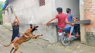 Must Watch New Funny Comedy Video 2021 TRY TO NOT LAUGH | Bindas Fun Masti