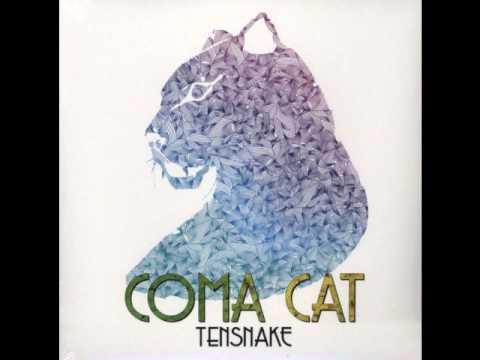 Coma Cat cover