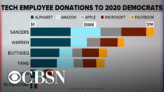 Bernie Sanders gains support from tech industry employees
