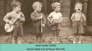Fool Inside Of Me   David Allan Coe & Diane Sherrill
