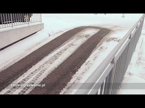 Siberian ginseng wpływ na siłę