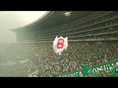 """Frente Radical (Salida) Welcome To Green Hell Deportivo cali vs America"" Barra: Frente Radical Verdiblanco • Club: Deportivo Cali"