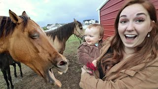 Niko Rides BABY SPIRIT The Horse!! Feeding Farm Animals!