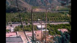 preview picture of video 'Subida al Jardín Botánico de Terque.wmv'