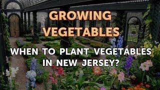 When to Plant Vegetables in New Jersey?