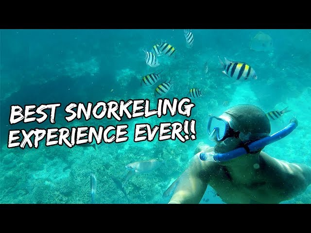 #1 BEST SNORKELING EXPERIENCE OF MY LIFE (AMANPULO, PHILIPPINES) | Vlog #183