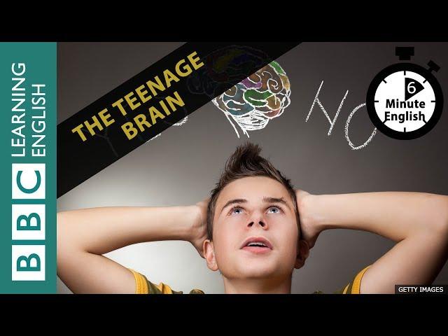 The teenage brain: 6 Minute English