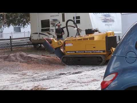 Ocean Isle Beach Stump Grinding Same Day Service Call now 910-467-8369