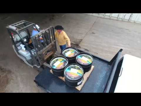 Protein Supplementation