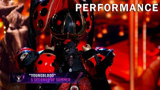 """Ladybug sings """"Young Blood"""" by 5 Seconds of Summer 