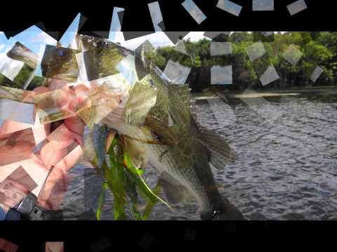 Maine Bass Fishing Pleasant Pond Gardiner/Richmond