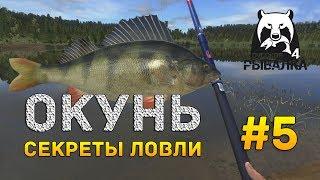 Рыбалка на озере чем ловить окуня