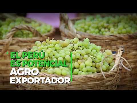 AGROMIN: Ministros de Estado clausuran la I Convención Agrominera
