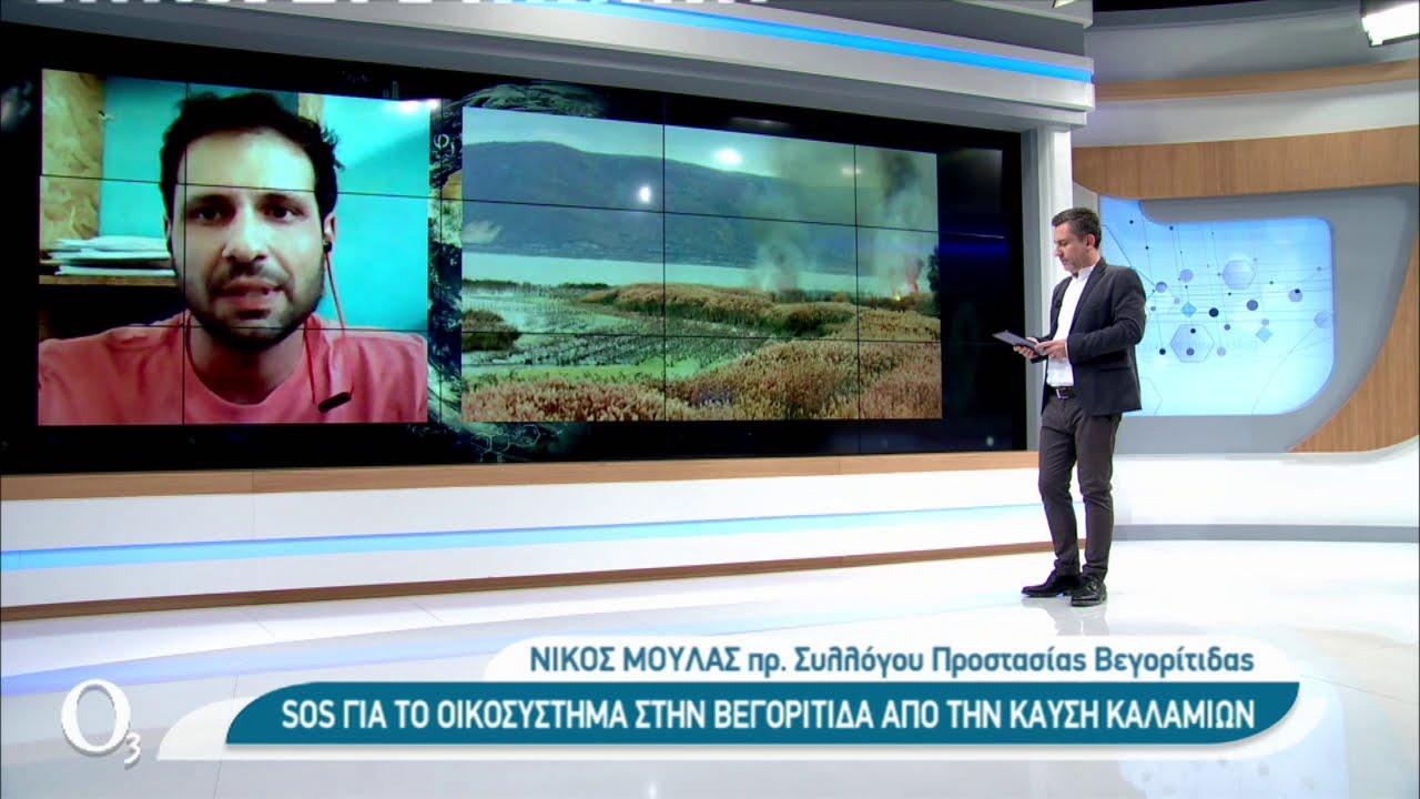 Οι εμπρησμοί καλαμιών καταστρέφουν το οικοσύστημα της Βεγορίτιδας | 26/02/2021 | ΕΡΤ