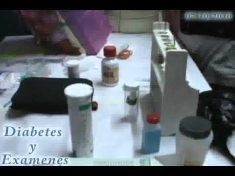 Chaga y la diabetes mellitus tipo 2