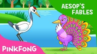 The Peacock and the Crane | Aesop's Fables | Pinkfong Story Time for Children