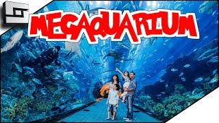 Aquarium Theme Park Simulator! Megaquarium Gameplay Ep 1