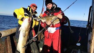 Рыбалка трески на кольском полуострове